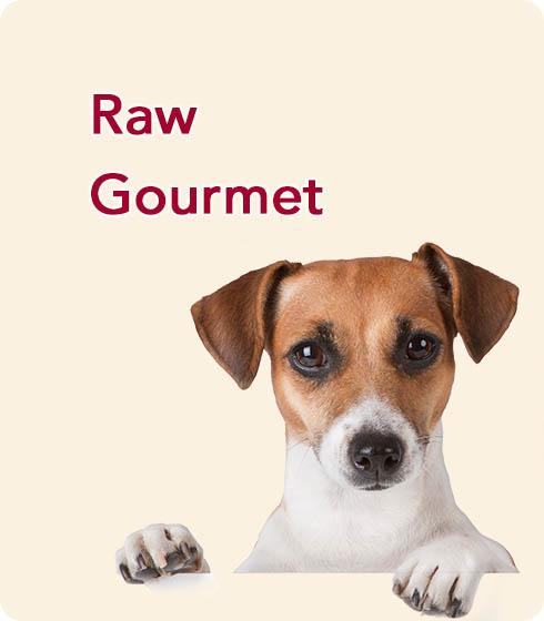 Raw-Gourmet-Final-2.jpg